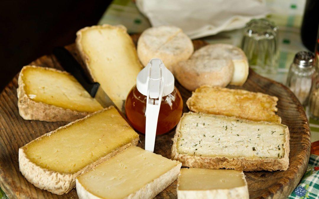 Degustazione di miele, formaggi di pecora e vini